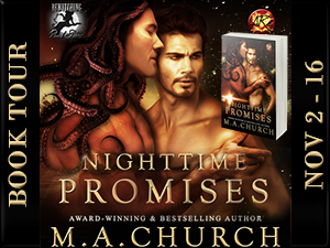 Nighttime Promises Button 300 x 225
