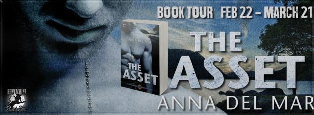 The Asset Banner 851 x 315