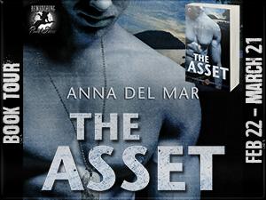 The Asset Button 300 x 225