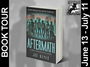aftermathButton 300 x 225