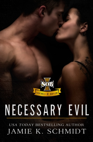 necessaryevil-revise
